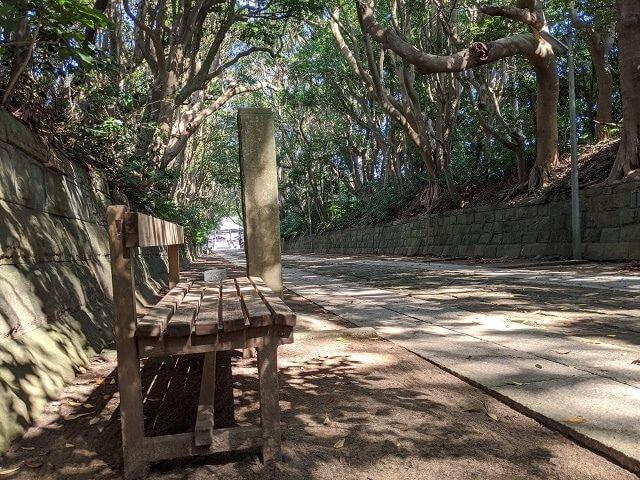 酒列磯前神社の樹叢 ベンチ 参道