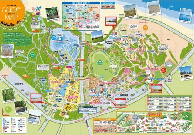 国営ひたち海浜公園 園内マップ ランチ カフェ レストラン