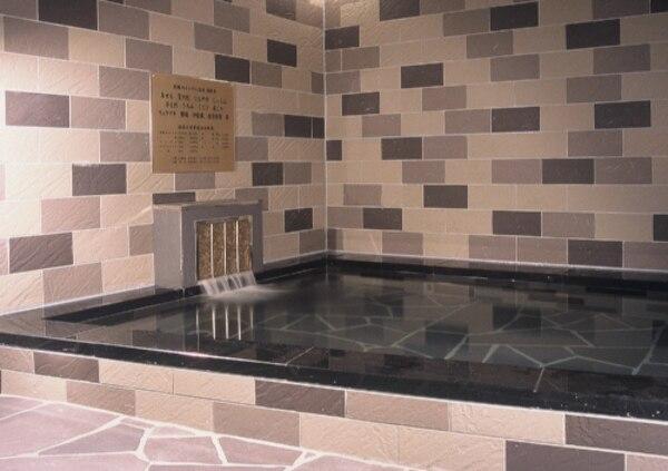 水戸 温泉 ホテル テラスザガーデン水戸