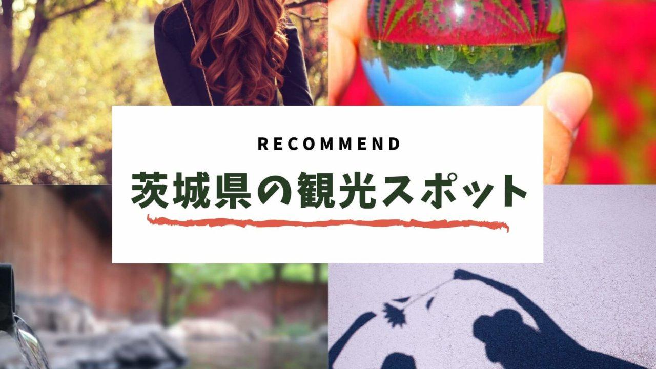 茨城 観光スポット おすすめ
