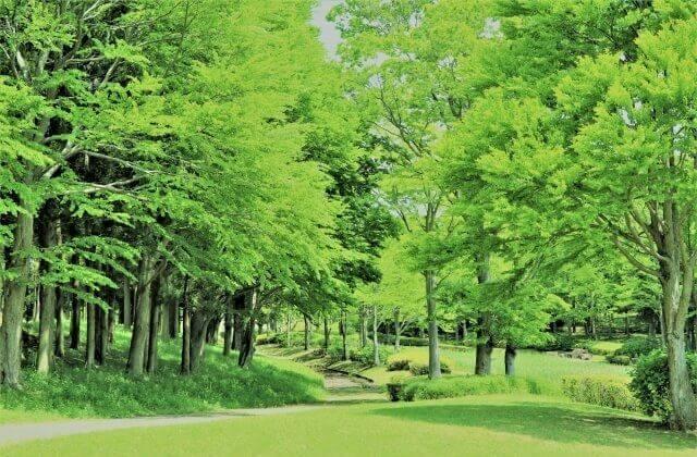 茨城県 つくば 観光 科学万博記念公園
