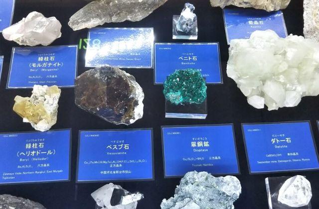地質標本館 鉱物 展示