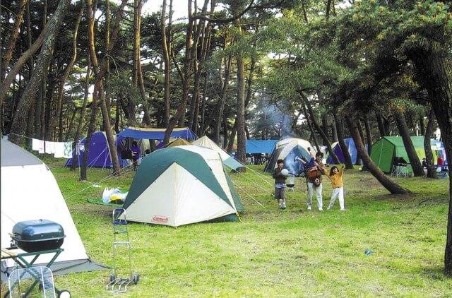 茨城県 大洗町 観光 大洗キャンプ場 フリーテントサイト