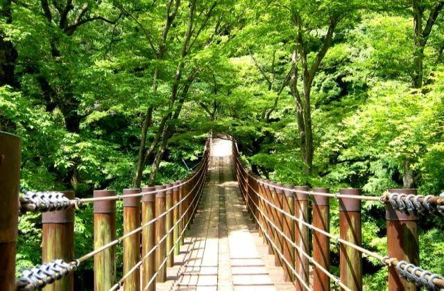 小滝沢キャンプ場 吊橋