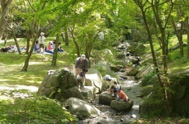 涸沼自然公園キャンプ場 水遊び せせらぎ広場