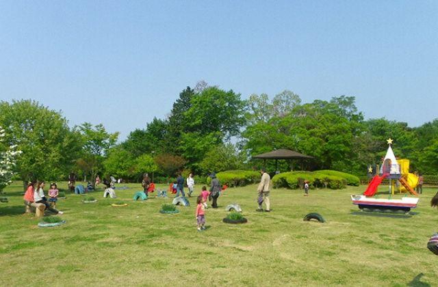 涸沼自然公園キャンプ場 芝生 わいわい広場 遊具