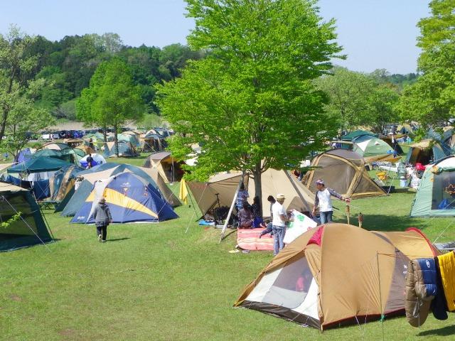涸沼自然公園キャンプ場 テントサイト フリー