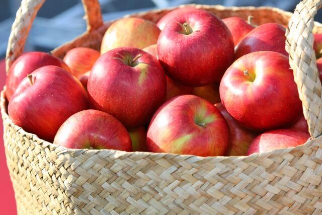 奥久慈りんご りんご狩り 大子町