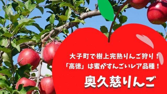 奥久慈りんご 大子町 りんご狩り