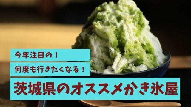 茨城県 かき氷 おすすめ 天然氷 メロン