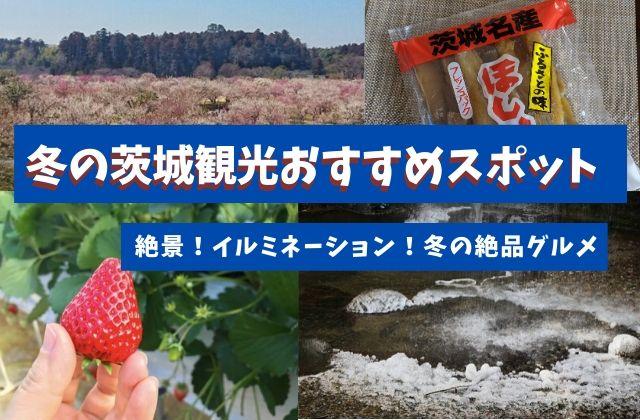 茨城観光 冬 おすすめ スポット グルメ