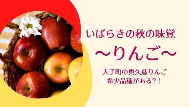 奥久慈りんご 大子町 茨城 りんご狩り