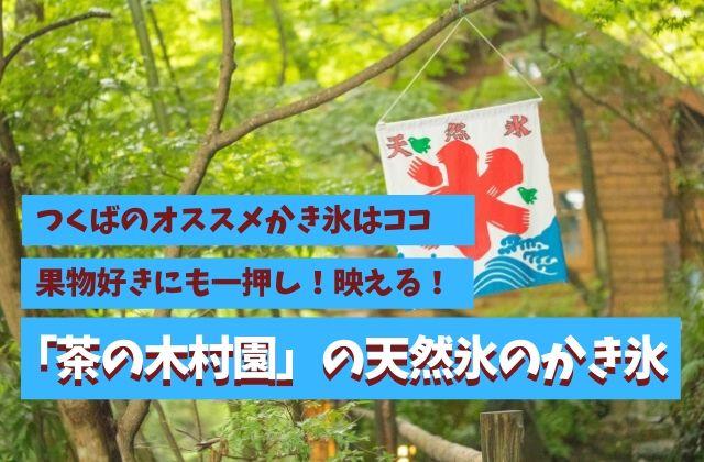 つくば かき氷 茶の木村園 おすすめ