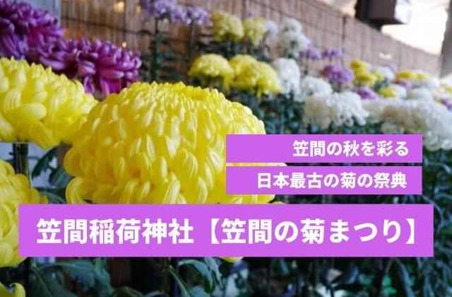 笠間 菊まつり 駐車場 周辺 観光スポット