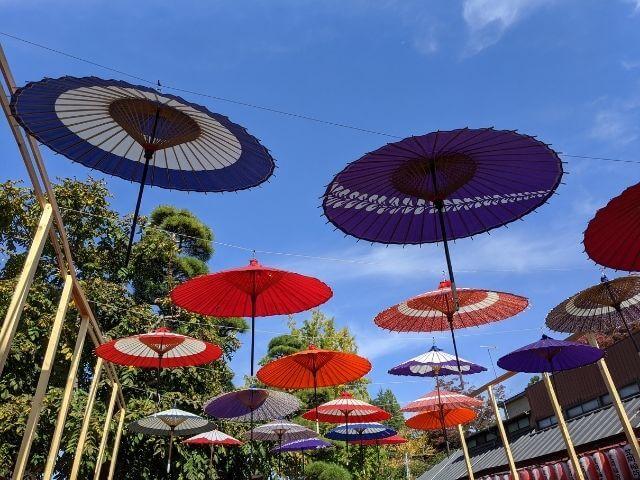 笠間稲荷神社 菊まつり 参道の和傘