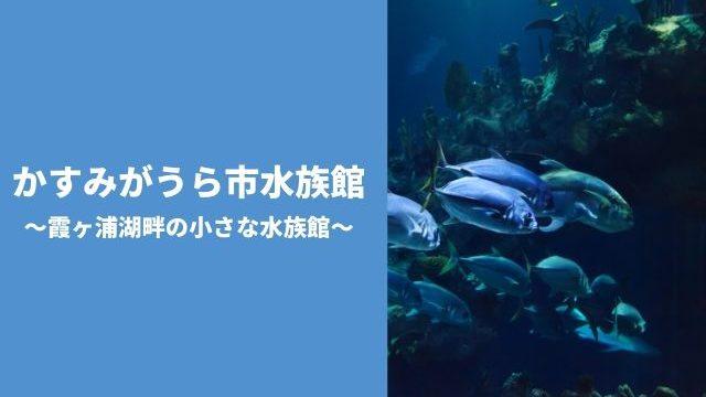 かすみがうら市水族館 霞ヶ浦 料金