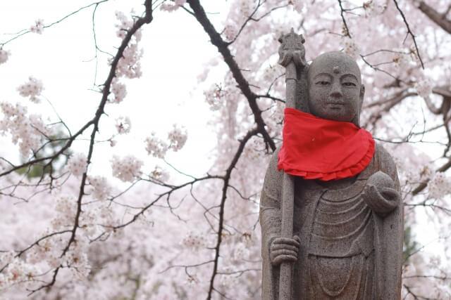 水戸大師 六地蔵寺 シダレザクラ 桜の名所 水戸市