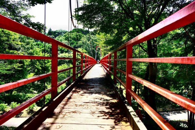 涸沼自然公園 あじさい 園内のスポット イトトンボ橋