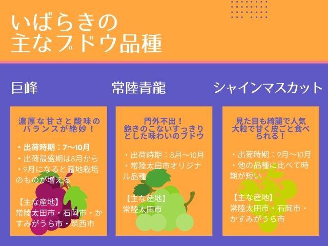 茨城県 ブドウ 品種 インフォグラフィック