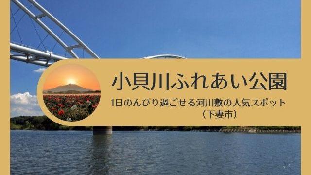 小貝川ふれあい公園 バーベキュー