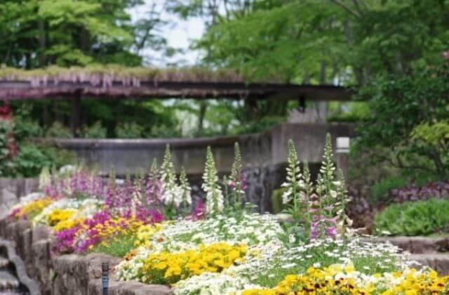 水戸市植物公園 テラスガーデン