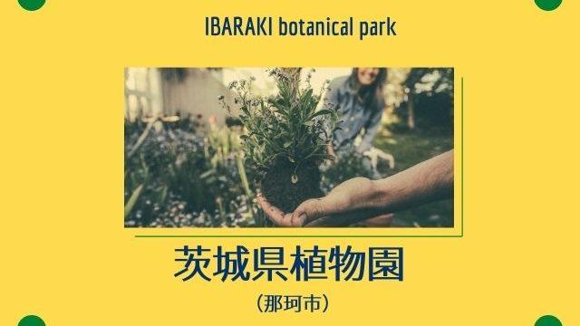 茨城県植物園 イベント きのこ博士館 那珂市