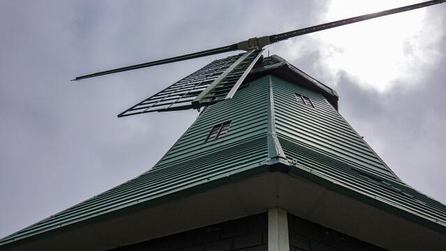 霞ヶ浦総合公園 チューリップ 高さが25m、羽根の直径は20mの大きな風車