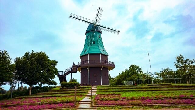 霞ヶ浦総合公園 オランダ型風車の前