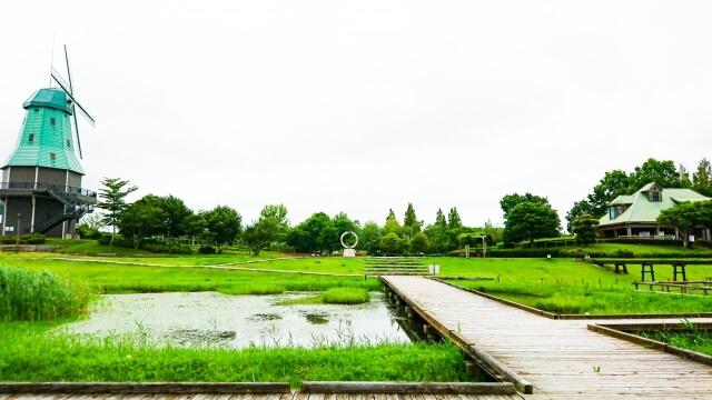 霞ヶ浦総合公園 ネイチャーセンター