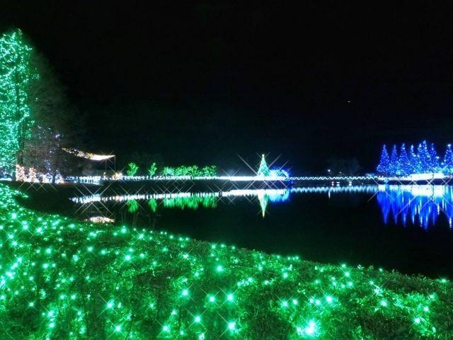 かわちイルミネーション 池の周り 河内町