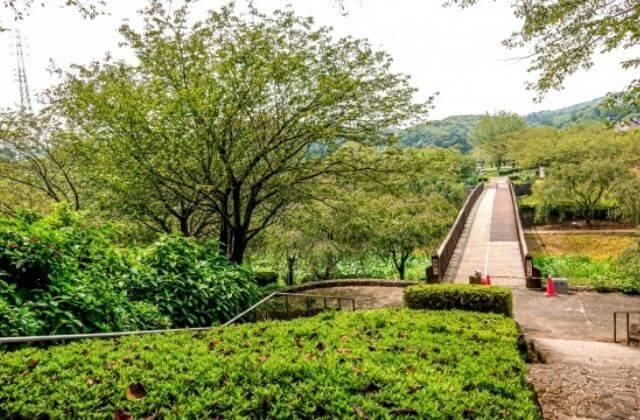 常陸風土記の丘 園内の遊歩道 茨城県石岡市