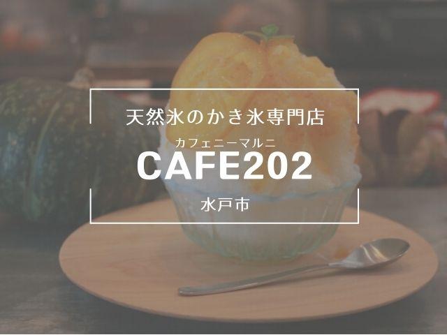 水戸 かき氷 Cafe202