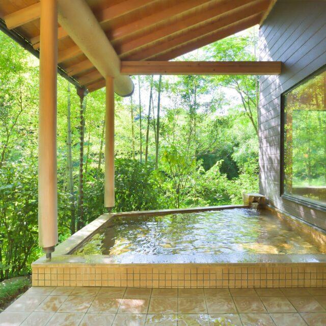北茨城 温泉 日帰り うぐいす谷温泉竹の葉 露天風呂
