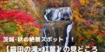 【袋田の滝×紅葉】見頃はいつ?2019年の基本情報や見所おすすめのプランも紹介